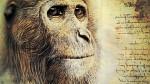 Propliopithecus